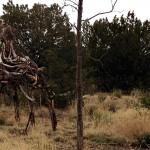 SF Botanical Garden - Stick Sculptures